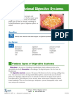 Types of Animal Digestive Systems.pdf