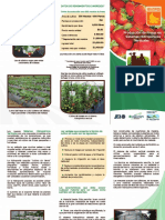 Brochure_produccion_fresas_hidroponico.pdf