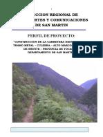 CARRETERA Metal - Culebra - Alto Marco, Tocache