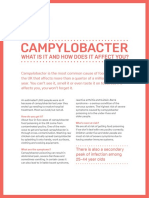 Campylobacter What is It