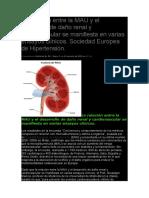 La relación entre la MAU y el desarrollo de daño renal y cardiovascular se manifiesta en varias ensayos clínicos