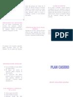 Plan Casero Hemiplejia Der