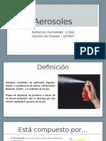 Aerosoles - Gestión de Calidad (1)