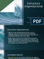 Taller 3-Estructura Organizacional