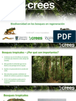 Biodiversity of Regenerating Rainforests ESP