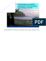 2008 Estuary/lagoons as habitat presentation