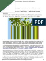 Plantação de Árvores Frutíferas - A Formação Do Pomar _ Cursos a Distância CPT