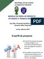 Modelo Perfil Proyecto  2017