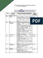 101.1- Decreto N. 83.080 de 1979 - Anexo I - Classificação das atividades profissionais segundo os agentes nocivos e ocupações.doc
