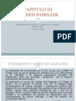 el_bien_familiar.pdf
