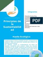 Tarea 2 Principios de La Sustentabilidad