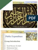 Public Expenditure Final
