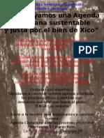 Agenda Ciudadana xiqueña 2017