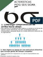 Características (Principios) Seis Sigma