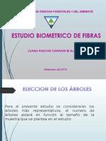 Estudio Biometrico de Fibras