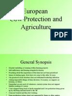 ELM Farm report and proposals sept 2007