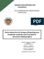 Determinación de hongos Fitopatógenos