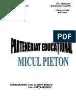 Proiect EducaTional Micul Pieton 2