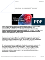 Neurociencia de la glándula pineal