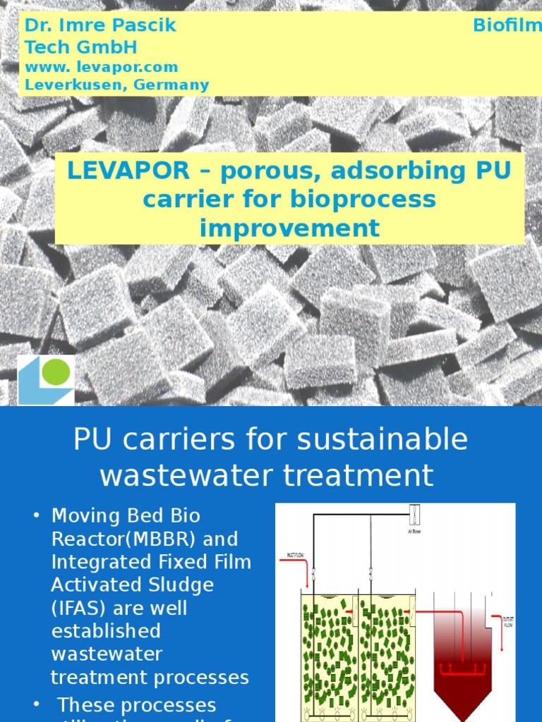 Biofilm wastewater treatment process
