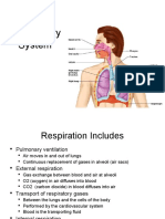 Lecture 21 -  Respiratory System students copy.ppt