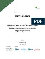 Relatório Pesquisa Currículos EF2