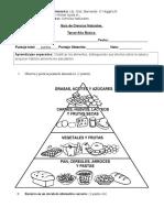 Guia de Ciencias Naturales Alimentacion