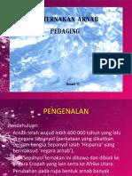 2013050812051711penternakan arnab.pdf