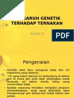 201306041606509pengaruh Genetik Terhadap Ternakan (1)