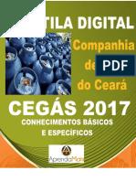 APOSTILA CEGÁS 2017 CONTADOR + BRINDES