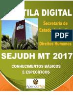 APOSTILA SEJUDH MT 2017 PSICÓLOGO + BRINDES