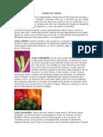 CLASES DE CHILES.docx