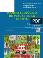 Control Ecologico de Plagas en La Huerta Cordoba