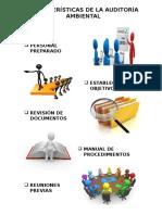 Características de La Auditoría Ambiental