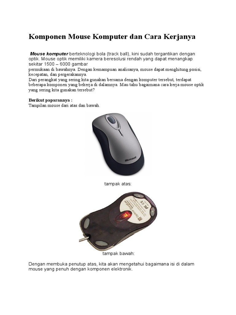 8c314e31113 Komponen Mouse Komputer Dan Cara Kerjanya