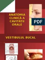 Anatomia Clinică a Cavității Orale - Copy