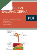 6 - Perdarahan Saluran Cerna Dokter Saleh SLOBGKALATB
