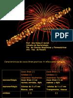 BACTERIOLOGIA -Estreptococos -Enterococos - Clase 2- 2016