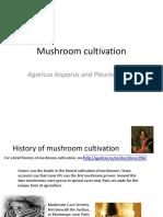 096 Mushroom Cultivation