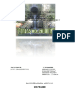 Proyecto Perlas Del Chiquin 4