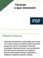 Toxicologia - Plantas Tóxicas