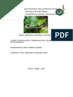 Medicina Natural (raul yaresi quispe)