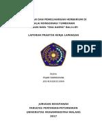LAPORAN PKL 2.docx