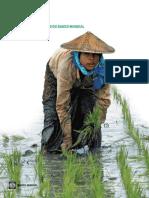 Banco Mundial - Relatório Anual de 2008 Do Banco Mundial