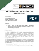Extraccion de Pectina en Guayaba Quimica Organica