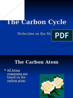 The Carbon Cycle - Power Point