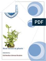 Heat Stress in Plants