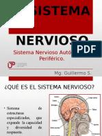 Sistema Nervioso Autonomo y Periferico