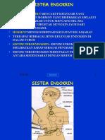 (7) Sist. Endokrin