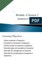 5.1.7 Anaemia in Pregnancy - Mauwa